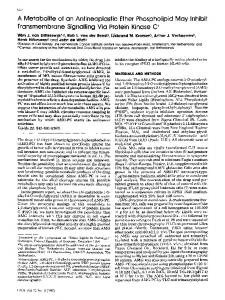 A metabolite of an antineoplastic ether phospholipid may inhibit transmembrane signalling via protein kinase C
