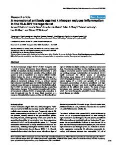 A monoclonal antibody against kininogen reduces inflammation in the HLA-B27 transgenic rat
