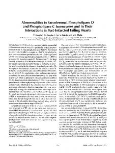 Abnormalities in sarcolemmal phospholipase D and phospholipase C isoenzymes and in their interactions in post-infarcted failing hearts