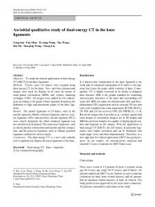 An initial qualitative study of dual-energy CT in the knee ligaments