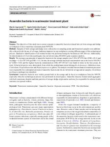 Anaerobic bacteria in wastewater treatment plant