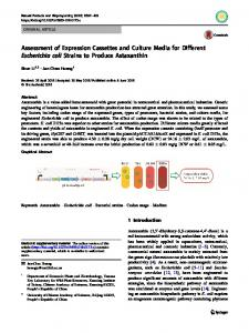 Assessment of Expression Cassettes and Culture Media for Different Escherichia coli Strains to Produce Astaxanthin