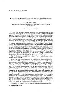 Biochemical definition of the mucopolysaccharidoses