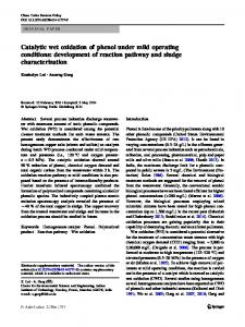 Catalytic wet oxidation of phenol under mild operating conditions: development of reaction pathway and sludge characterization