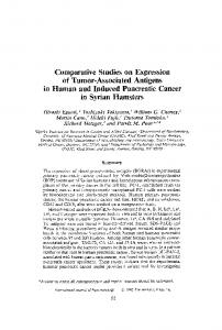 Comparative studies on expression of tumor-associated antigens in human and induced pancreatic cancer in syrian hamsters