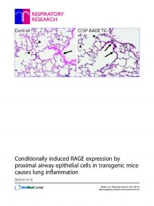 Conditionally induced RAGE expression by proximal airway epithelial cells in transgenic mice causes lung inflammation
