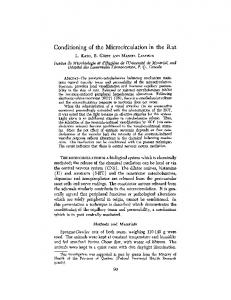 Conditioning of the microcirculation in the rat