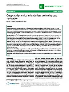 Copycat dynamics in leaderless animal group navigation