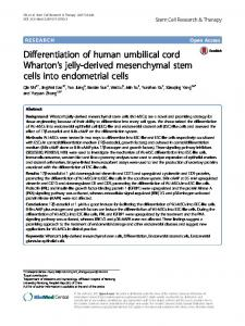 Differentiation of human umbilical cord Wharton's jelly-derived mesenchymal stem cells into endometrial cells