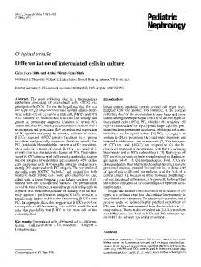 Differentiation of intercalated cells in culture