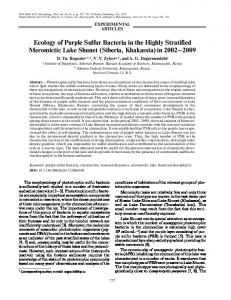 Ecology of purple sulfur bacteria in the highly stratified meromictic Lake Shunet (Siberia, Khakassia) in 2002–2009
