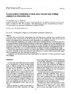 Ectomycorrhizal colonization on black spruce and jack pine seedlings outplanted in reforestation sites