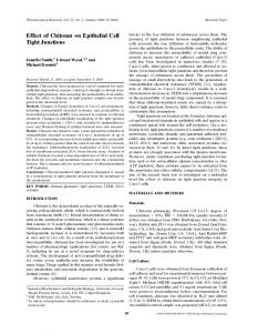 Effect of Chitosan on Epithelial Cell Tight Junctions