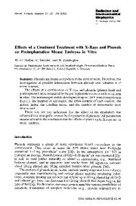 Effects of a combined treatment with X-rays and phenols on preimplantation mouse embryos in vitro