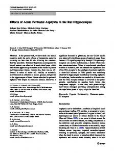 Effects of Acute Perinatal Asphyxia in the Rat Hippocampus