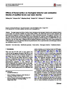 Effects of fractal surface on rheological behavior and combustion kinetics of modified brown coal water slurries