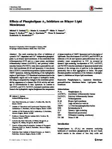 Effects of Phospholipase A2 Inhibitors on Bilayer Lipid Membranes