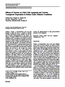 Effects of Taurine on Glial Cells Apoptosis and Taurine Transporter Expression in Retina Under Diabetic Conditions