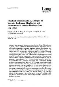Effects of thromboxane A2 analogue on vascular resistance distribution and permeability in isolated blood-perfused dog lungs