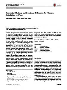 Enzymatic Efficiency and Genotypic Differences for Nitrogen Assimilation in Wheat
