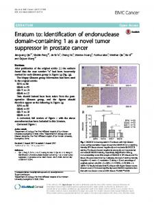 Erratum to: Identification of endonuclease domain-containing 1 as a novel tumor suppressor in prostate cancer
