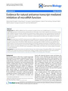 Evidence for natural antisense transcript-mediated inhibition of microRNA function