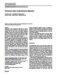 Functional study of glenohumeral ligaments