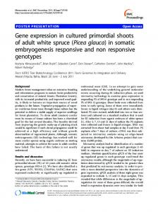 Gene expression in cultured primordial shoots of adult white spruce (Picea glauca) in somatic embryogenesis responsive and non responsive genotypes