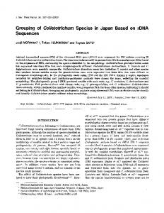 Grouping of Colletotrichum Species in Japan Based on rDNA Sequences