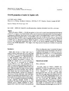 Growth promotion of maize by legume soils