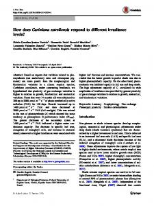 How does Cariniana estrellensis respond to different irradiance levels?
