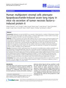 Human multipotent stromal cells attenuate lipopolysaccharide-induced acute lung injury in mice via secretion of tumor necrosis factor-α-induced protein 6