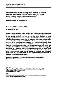 Identification of a Neutralizing scFv Binding to Human Vascular Endothelial Growth Factor 165 (VEGF165) Using a Phage Display Antibody Library