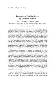 Inactivation of Candida albicans by ultraviolet radiation