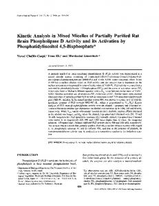 Kinetic Analysis in Mixed Micelles of Partially Purified Rat Brain Phospholipase D Activity and its Activation by Phosphatidylinositol 4,5-Bisphosphate
