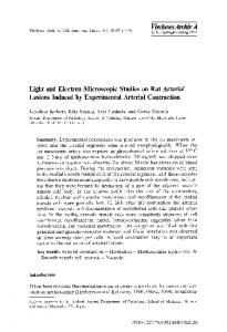 Light and electron microscopic studies on rat arterial lesions induced by experimental arterial contraction