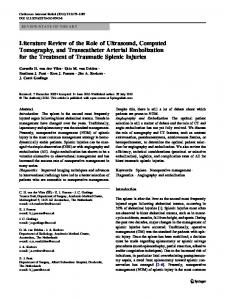 Literature Review of the Role of Ultrasound, Computed Tomography, and Transcatheter Arterial Embolization for the Treatment of Traumatic Splenic Injuries