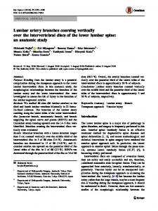 Lumbar artery branches coursing vertically over the intervertebral discs of the lower lumbar spine: an anatomic study