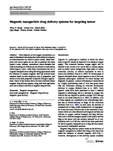 Magnetic nanoparticle drug delivery systems for targeting tumor