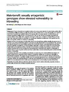 Male-benefit sexually antagonistic genotypes show elevated vulnerability to inbreeding