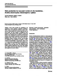 Male production by non-natal workers in the bumblebee, Bombus deuteronymus (Hymenoptera: Apidae)