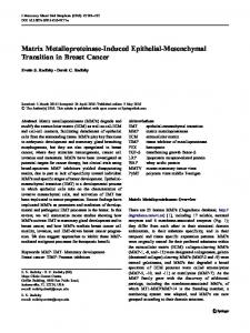Matrix Metalloproteinase-Induced Epithelial-Mesenchymal Transition in Breast Cancer