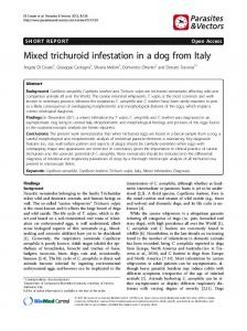 Mixed trichuroid infestation in a dog from Italy