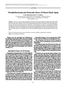 Morphofunctional and molecular bases of pineal gland aging