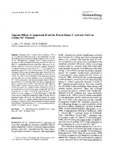 Opposite effects of angiotensin II and the protein kinase C activator OAG on cardiac Na+ channels