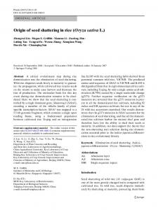 Origin of seed shattering in rice (Oryza sativa L.)