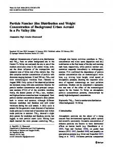 Particle Number Size Distribution and Weight Concentration of Background Urban Aerosol in a Po Valley Site