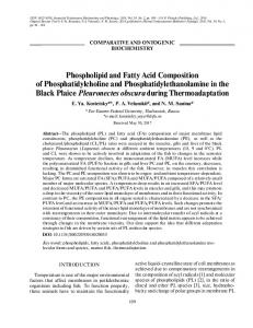 Phospholipid and Fatty Acid Composition of Phosphatidylcholine and Phosphatidylethanolamine in the Black Plaice Pleuronectes obscura during Thermoadaptation