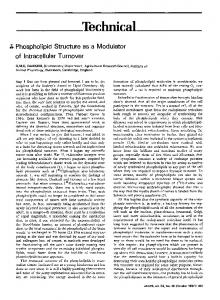 Phospholipid structure as a modulator of intracellular turnover