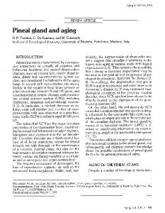 Pineal gland and aging